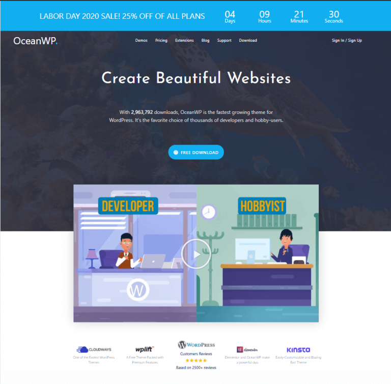 Why OceanWP is one of the Best Theme in WordPress?